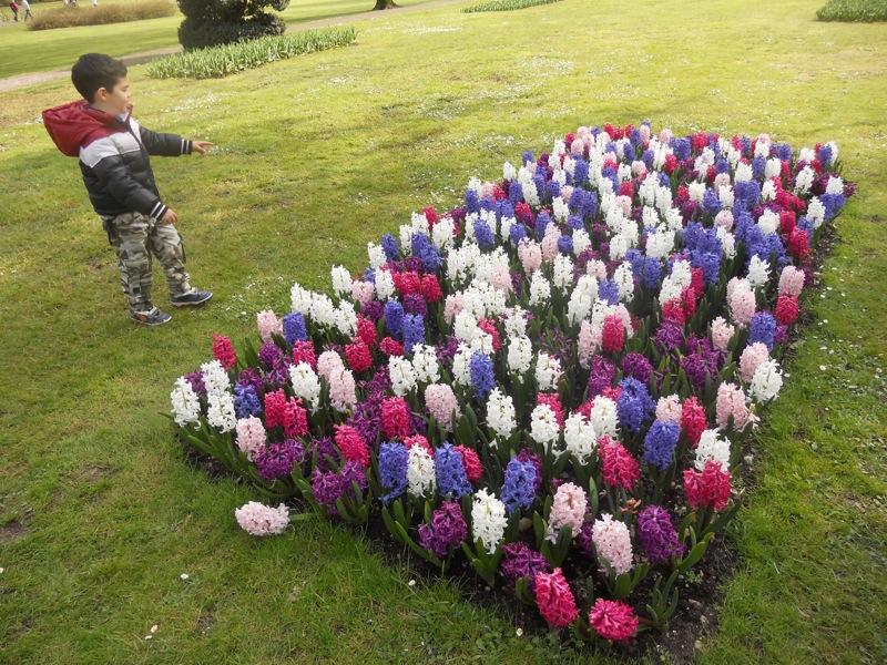 Una giornata al parco sigurt con i tulipani in fiore tutte le attrattive viaggi per bambini - Il giardino di elizabeth ...