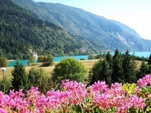 cat-orsini-molveno-lago2